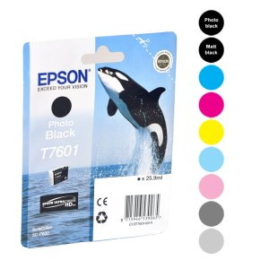 Epson Cartridges SC-P600