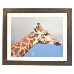 Freestyle bronze picture frame with mount