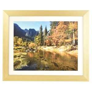 Freestyle light gold picture frame with mount