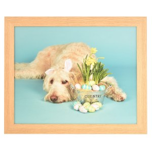 Freestyle light wood picture frame without mount