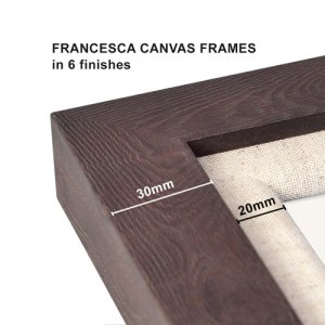 Francesca Canvas Frames