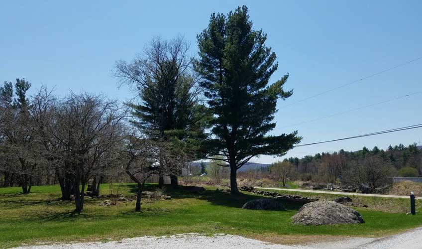 maple-grove-open-day-3