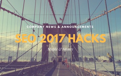 The Results Are In – 2017 SEO Hacks