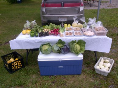 August 16th Market Stand