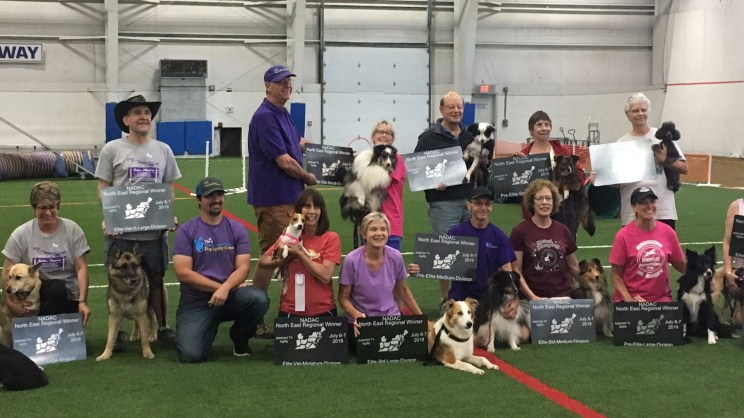 line of handlers and dogs with their regional awards