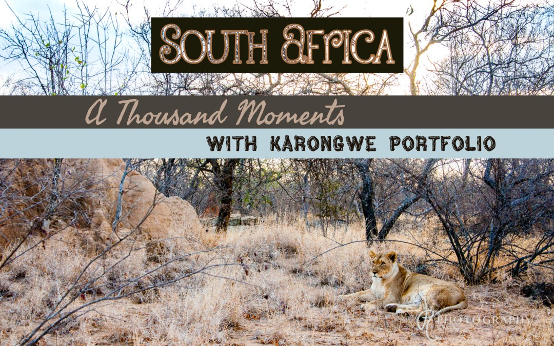 South Africa: A Thousand Moments with Karongwe Portfolio