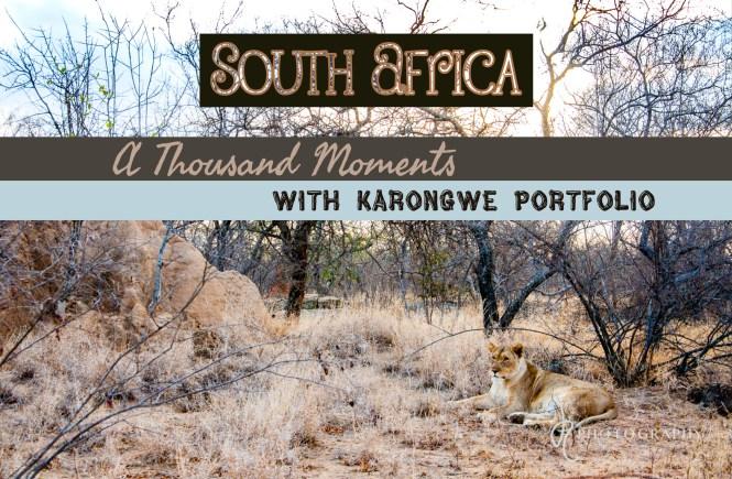 South Africa Karongwe Portfolio