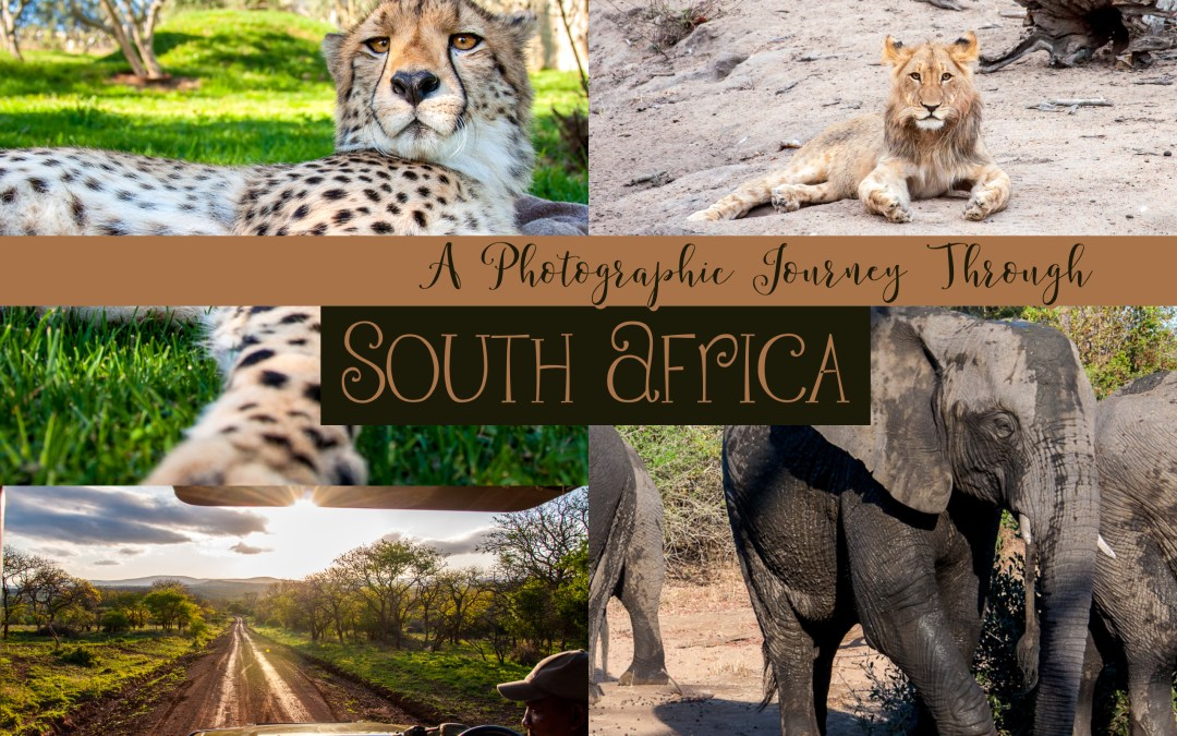 A Photographic Journey Through South Africa