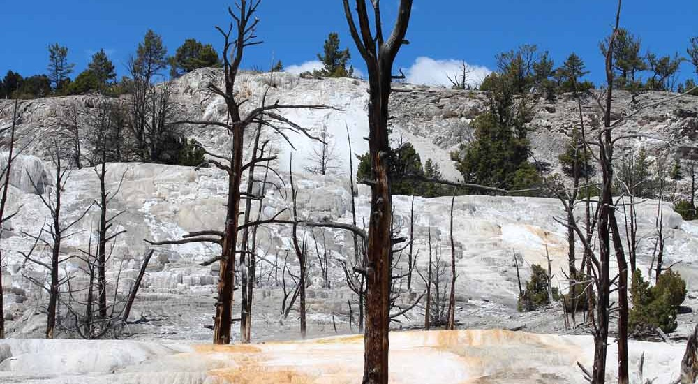 Mammoth Hot Springs, Yellowstone NP, travel report – Map of Joy