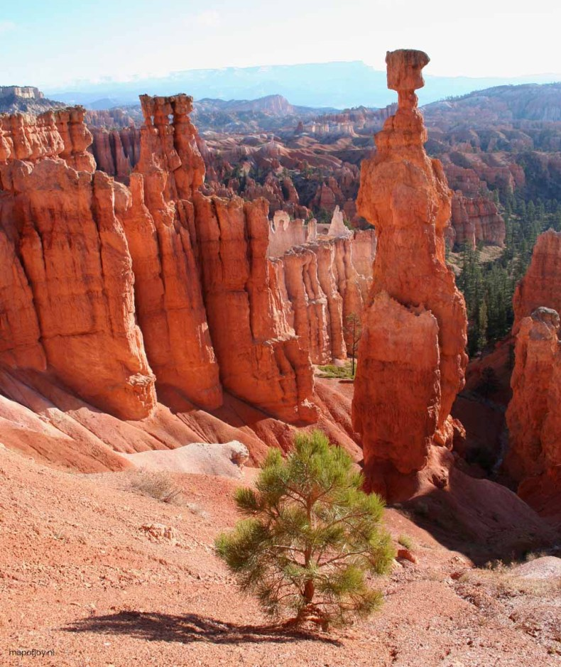 Bryce Canyon, West-USA - Map of Joy