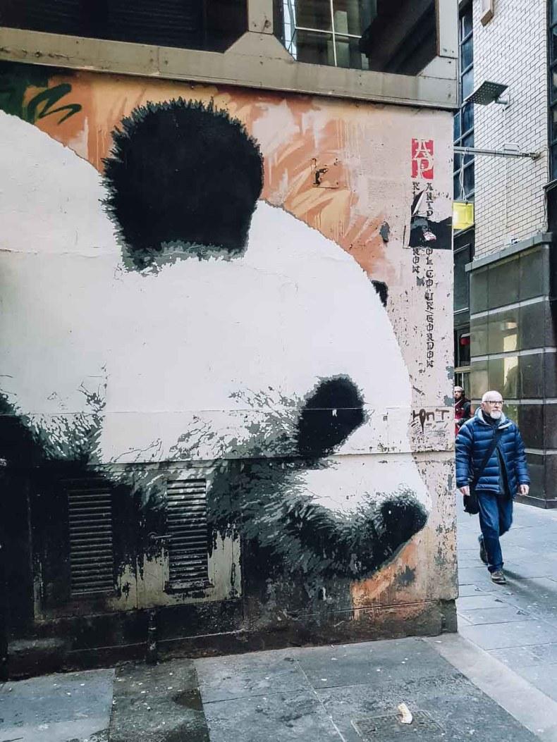 Glasgow's Panda, Gordon Lane, Glasgow - Map of Joy