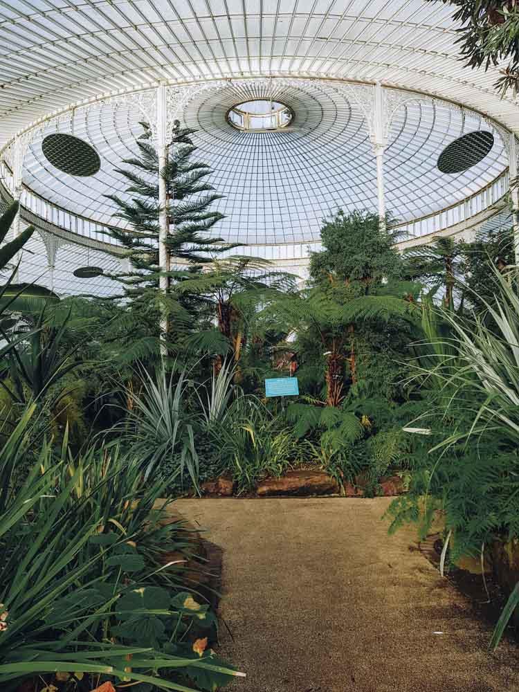 Glasgow Botanic Gardens - Map of Joy
