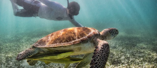 4 Unforgettable Water Adventures in Mexico