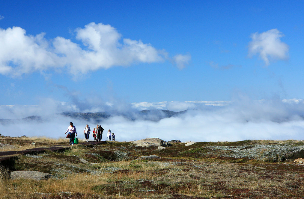 Above the clouds. Hiking Kosciuszko National Park. Photo CC by Andrea Schaffer.