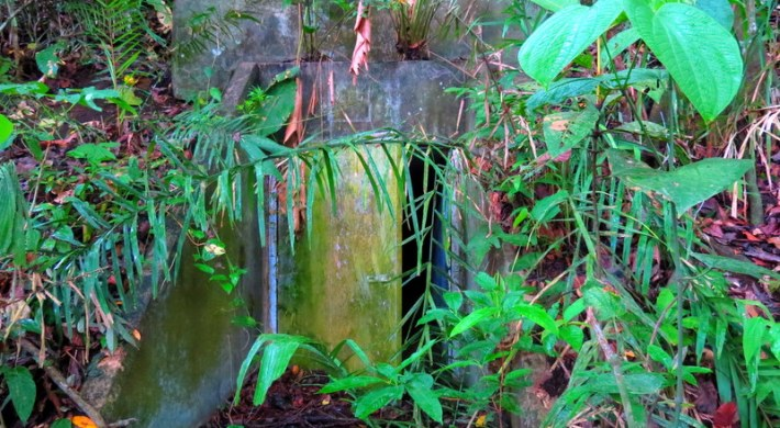 Abandoned Pipe-line in the Panama Jungle. Would you go in?!