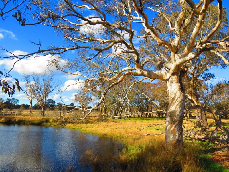 Outside Canberra Australia