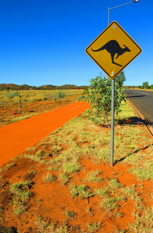 No trip to Australia is complete without a road trip, and there is nothing really like exploring the Land Down Under by driving yourself.