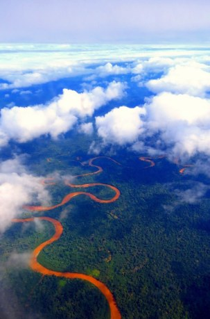 Amazon Bolivia