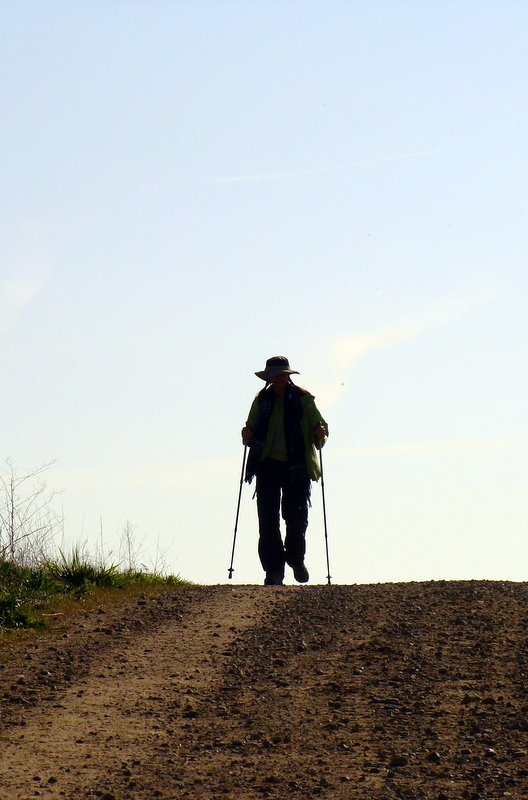 """Can one documentary inspire you to walk 500 miles? """"Walking the Camino: Six Ways to Santiago"""" can."""