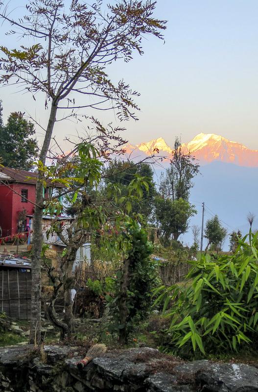 Volunteering in the Himalayas.