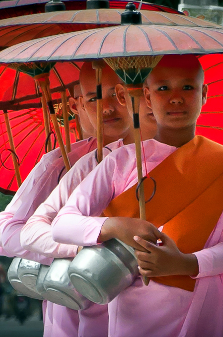 """These beautiful young Burmese girls, with their pink robes and red parasols, are nuns of the Theravada (meaning """"the Ancient Teaching"""") order of Buddhism."""