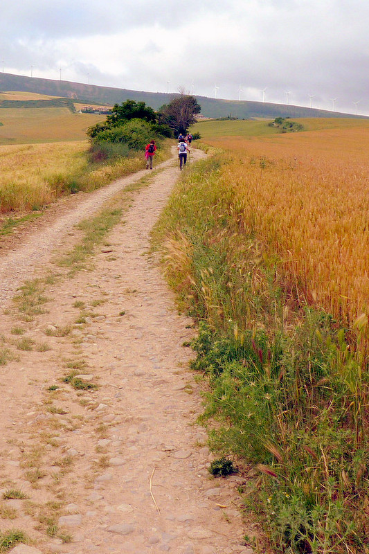 Walking the Camino de Santiago.