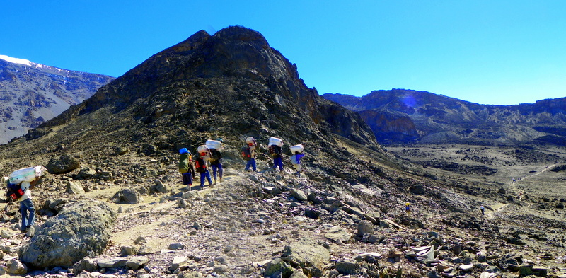 In a matter of days you'll climb Kilimanjaro from the equator to what feels like the Arctic, moving through grasslands, tropical rainforest, alpine meadows, moorlands and desert uplands to snow and ice.