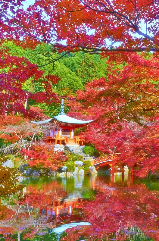 With gorgeous Japanese gardens, incredible shrines and temples, parks and markets, it's no secret why expats love Kyoto.