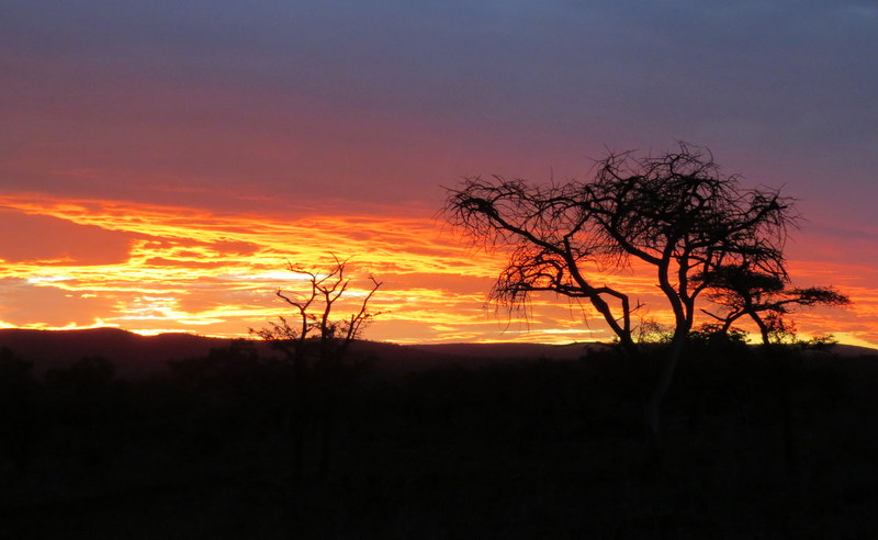 The Zululand Rhino Reserve comprises of a staggering 23,000 hectare big five game park, with the Black Rhino Range Expansion being its primary aim.