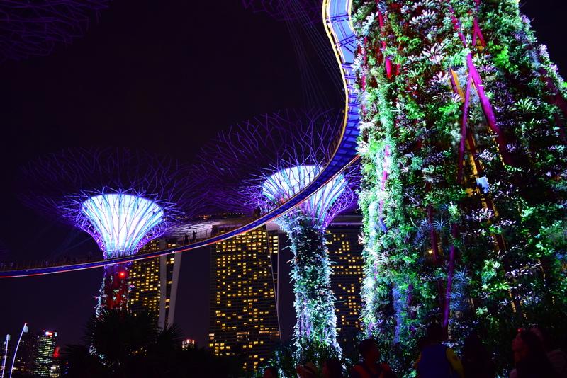 Singapore Gardens by the Bay Light Show
