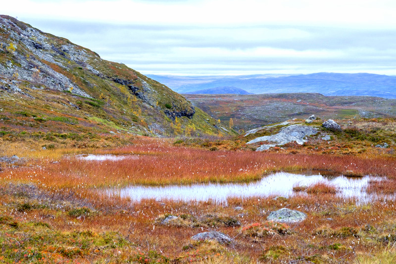 Lapland in Autumn / Fall