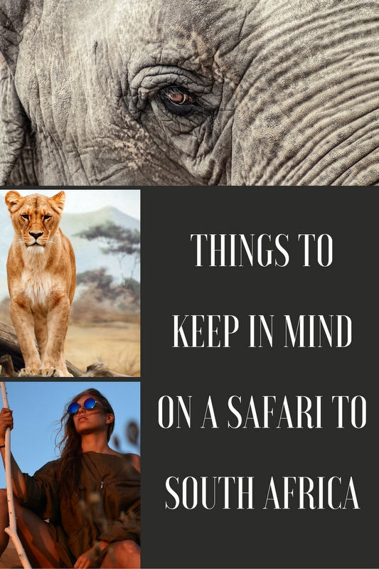 South Africa is a great destination to choose for all of this, and if you want to make the most of it, these tips will help you to maximise the magic.