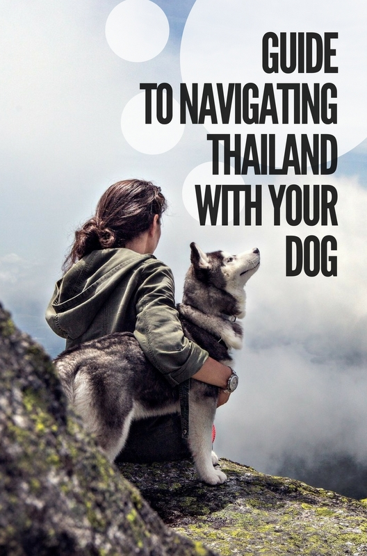 Traveling with your dog overseas especially in Asian countries is an adventure of a lifetime.
