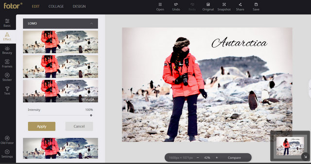 Editing Your Travel Photos: Use a Free Online Editor Like