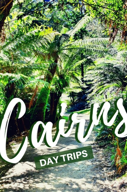 You really couldn't ask for more out of a destination when it comes to things to do in Cairns, Australia.