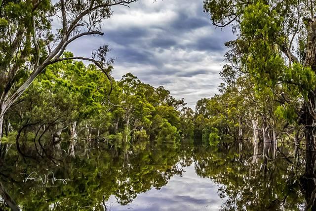 Hattah Kulkyne National Park Australia