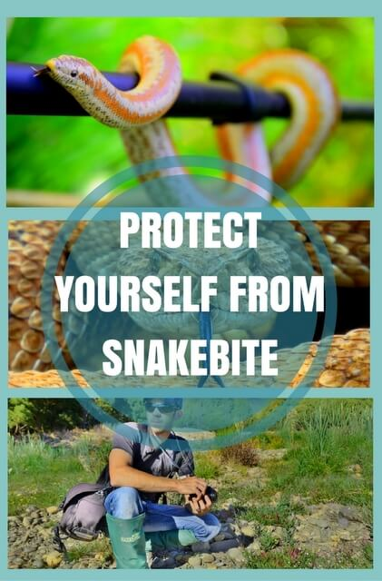 How to protect yourself against snake bite