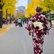 Things to do in Kansai Region, Japan