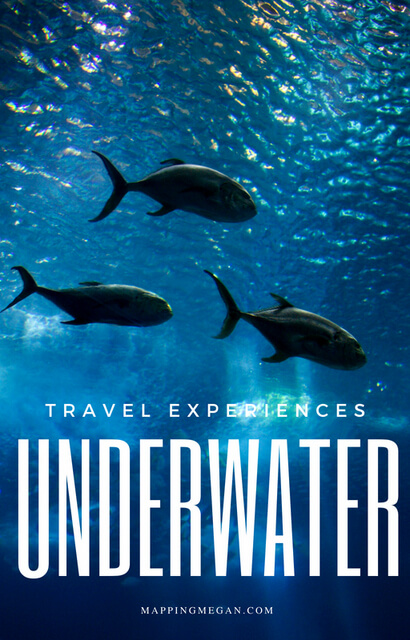 Great underwater experiences for your world travel bucketlist! From scuba diving and snorkeling, to underwater museums, hotels, and even ancient cities lost under the sea.