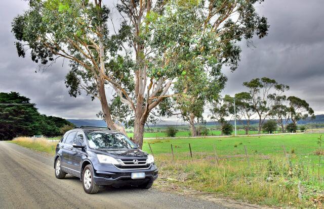 Car roadtrip through Tasmania
