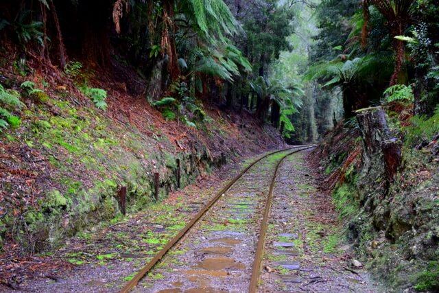 West Coast Wilderness Railway Strahan Tasmania