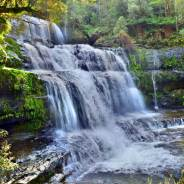 The Best (& Most Inspiring) Waterfalls to Visit in Tasmania