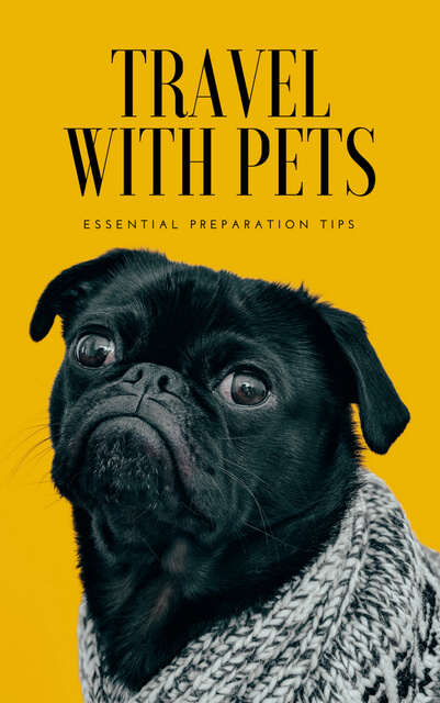 Everything you need to know before you travel with pets, whether that's a vacation with dogs, cats, puppies, or other animals in cars, plane, or road trips.