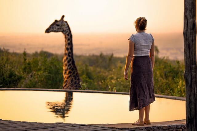 African Safari RF