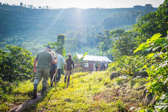 Gorilla trekking Africa trekking out