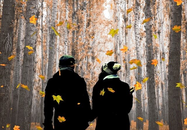 Autumn leaf couple RF