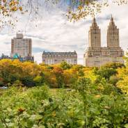Why New York City is Still One of the Best Cities to Visit