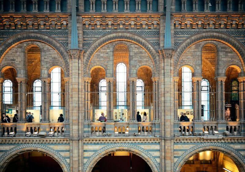 London Natural History Museum RF