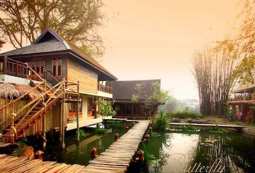 butterfly villas chiang mai
