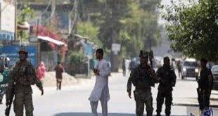 وفقًا لبيانات رسمية بالتعاون مع الجيش الأفغاني